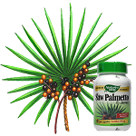 Does saw palmetto work for androgenetic alopecia