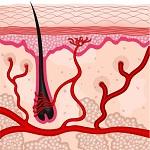 Can masturbation cause hair loss