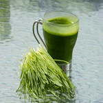 How wheatgrass helps preventing gray hair
