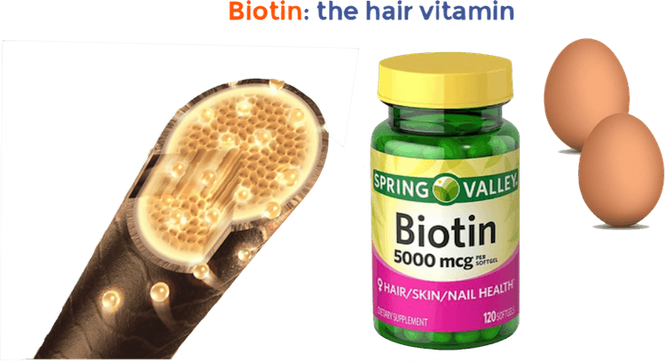 biotin the hair vitamin - to decrease hair loss naturally